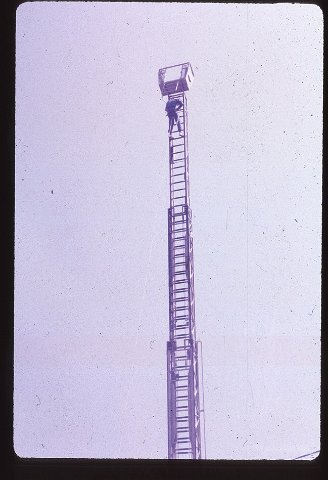 F (133)